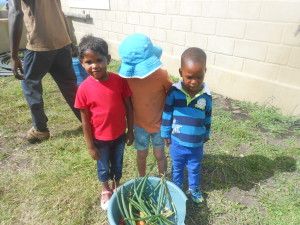 Farbin, Josh and newby, Live with their harvest