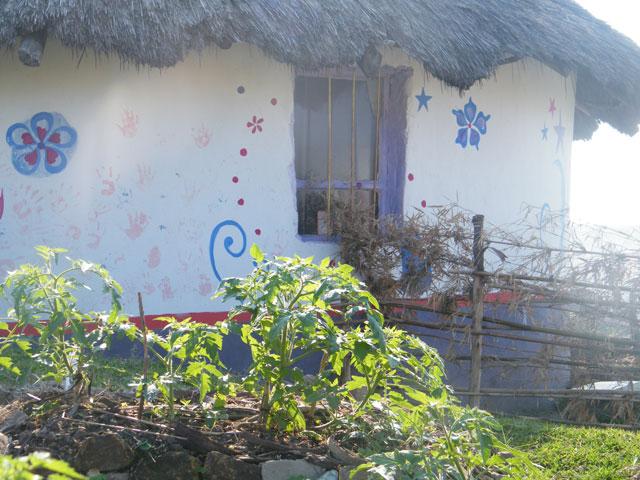 Abantwana, abantwana on Coffee Bay hill, how does your garden grow?